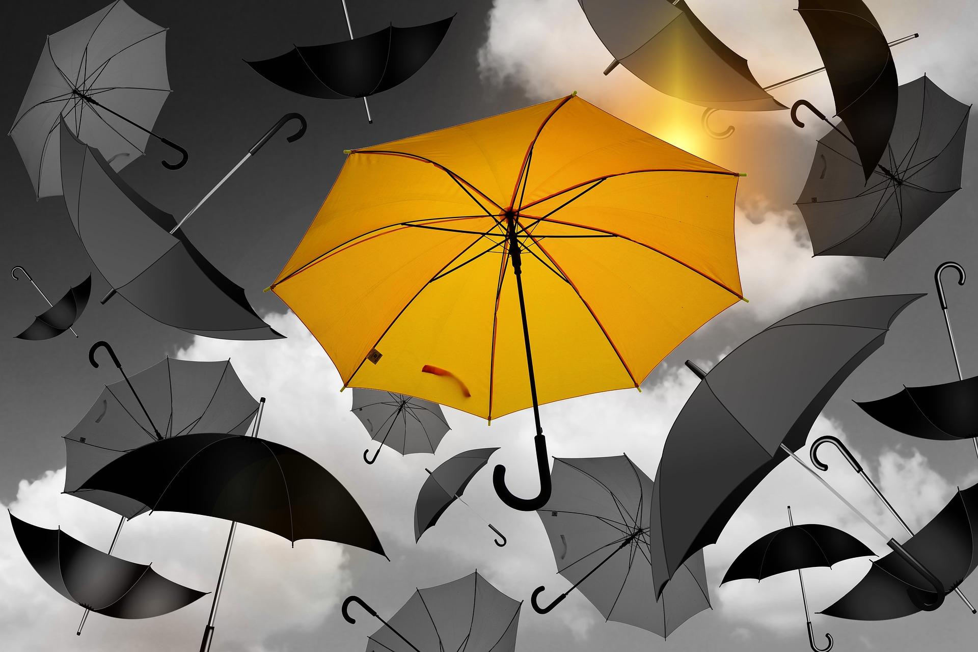 Excess & Umbrella