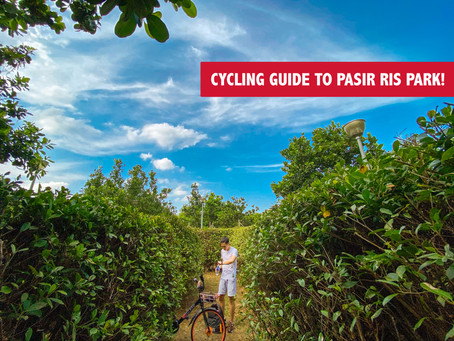 The Ultimate Cycling Guide to Pasir Ris Park