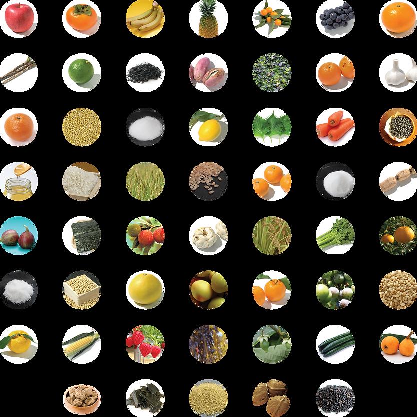 ingredients_COMPLETE_web.png