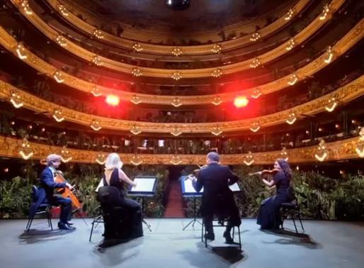 Barcelona celebra su desconfinamiento con un concierto para plantas