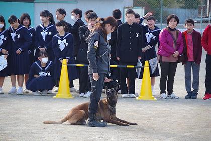 tisato6.jpg