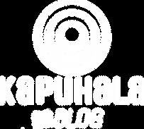 KH blog logo white ITALIC.png
