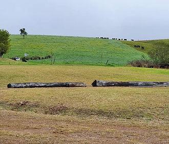 The-Sawmill-2.jpeg