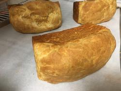 Fresh GF bread?