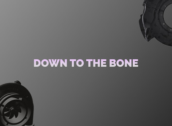 Down to the bone cover.jpg