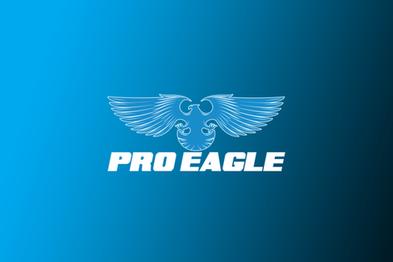 Brands-BG-ProEagle.png