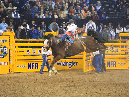 RODEO NFR 2 – 2018