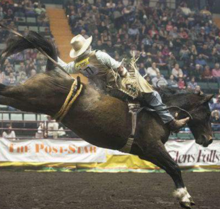 GEORGE'S BAD CAT SELECTED FOR THE NATIONAL FINALS RODEO IN LAS VEGAS