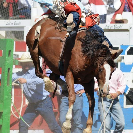 PAINTED PONY RODEO GETS NATIONAL ATTENTION