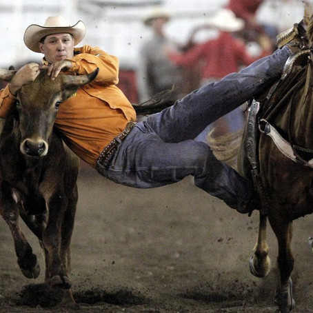 SIXTEEN STEER WRESTLERS AMONG THE 200 CONTESTANTS ENTERED IN THE GERRY RODEO