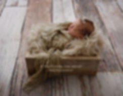rustic newborn photography with vintage wood crate and wrap on barnwood backdrop