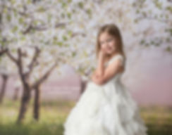 little girl wearing white dollcake frock dress in front of dogwood or cherry blossom orchard photography