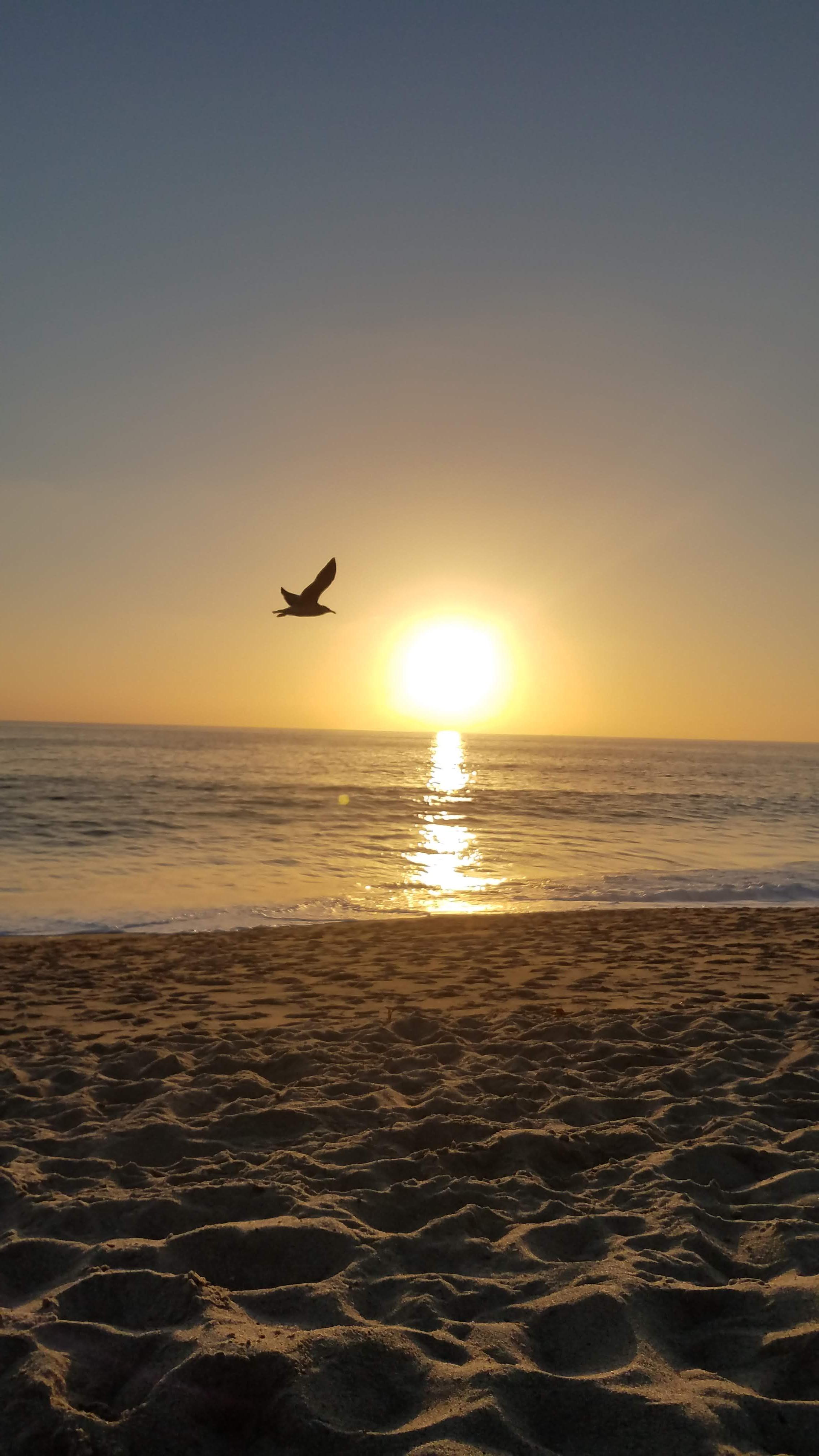 Forgiveness Healing Meditation