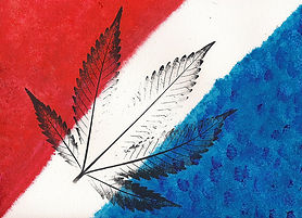Marijuana-Schools-2.jpg