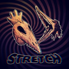 Day 26 - Stretch