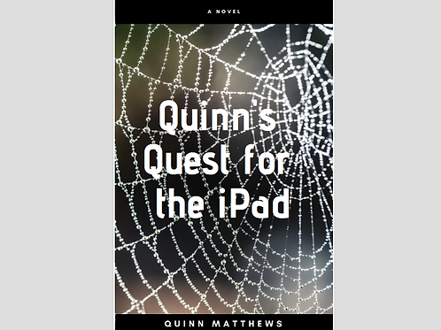 Quinn's Quest for the iPad