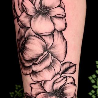 Peony and magnolias