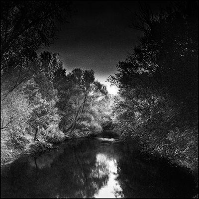 riverandtrees_v2.jpg