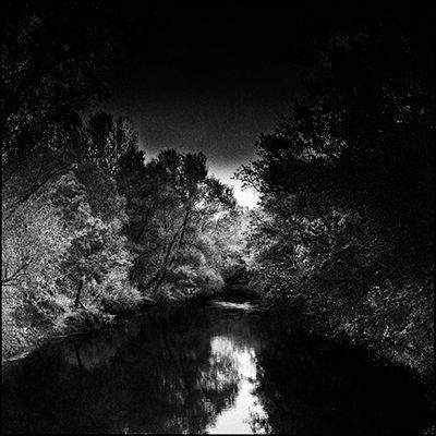 30_riverandtrees.jpg