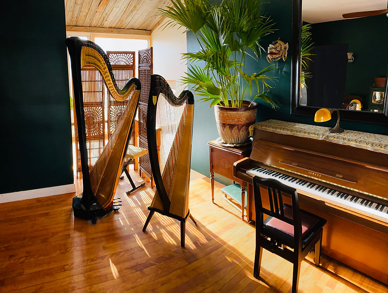 Interior veiw of music room at Harp on the Hill Studio--piano and harp lessons