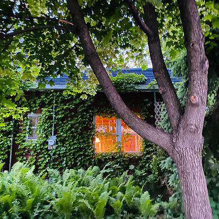 Exterior view of music room at Harp on the Hill Studio--harp and piano lessons