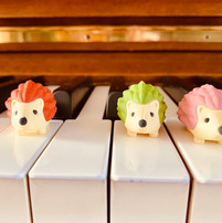 Iwako hedgehog erasers used as keyboard geography markers for piano lessons