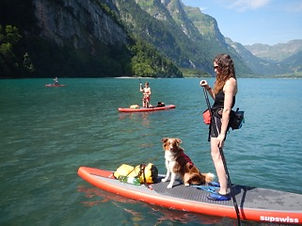 Dog-SUP Stand Up Paddle mit Hund in Zürich