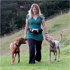 Hunde-Verhaltensberatung und Privatlektionen