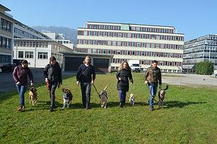 Social Walks - Hundebegegnungen an der Leine