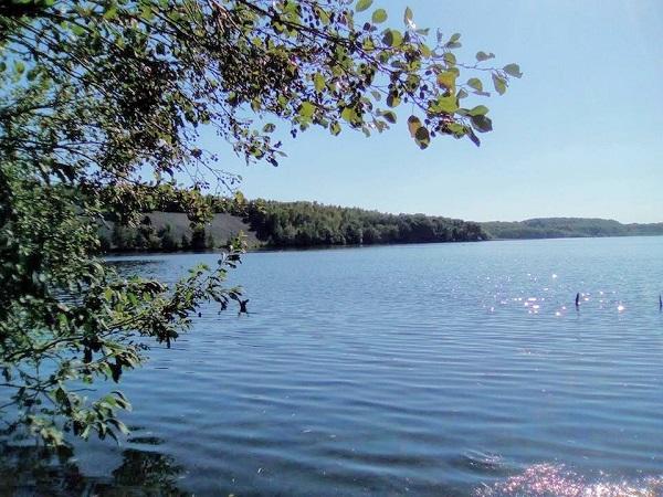 Forêt domaniale de Raismes