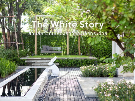 The White Story (#gingsite665)
