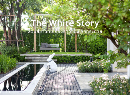 The White Story ( #gingsite665 )