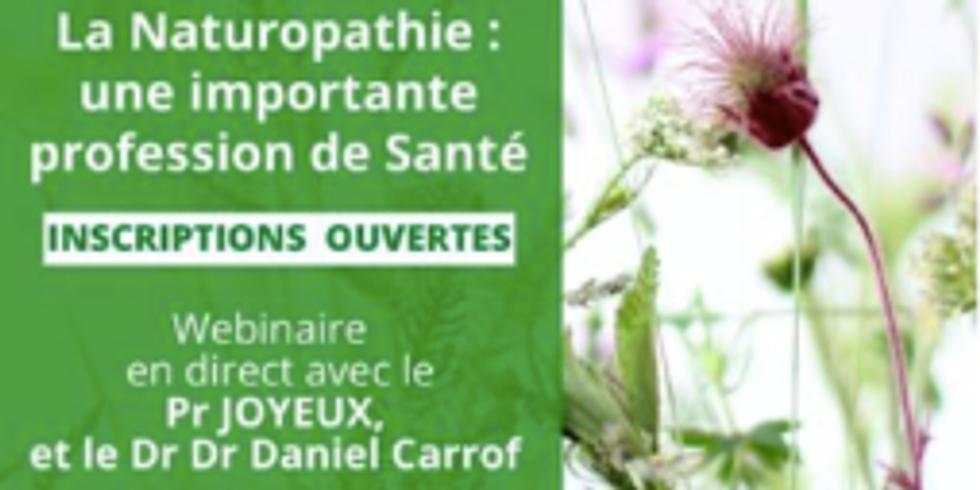 Webinaire : la naturopathie, une importante profession de santé