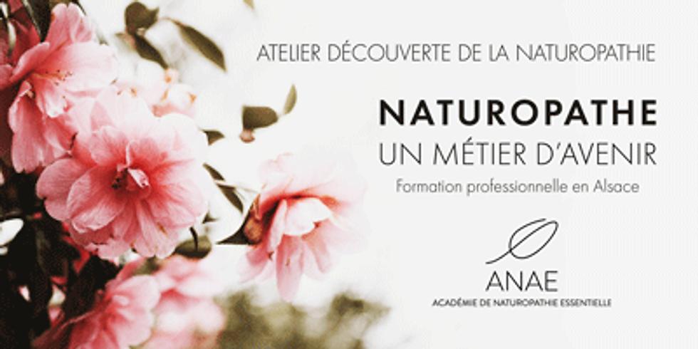 Atelier découverte de la Naturopathie