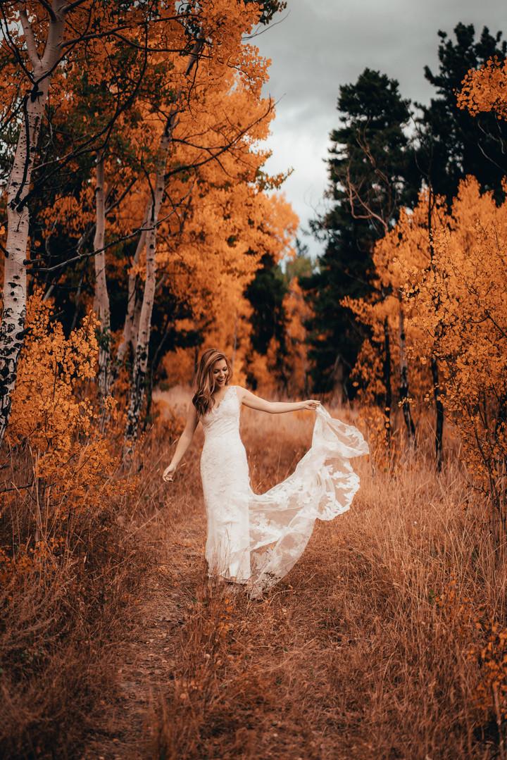 Fall Bridal Portrait