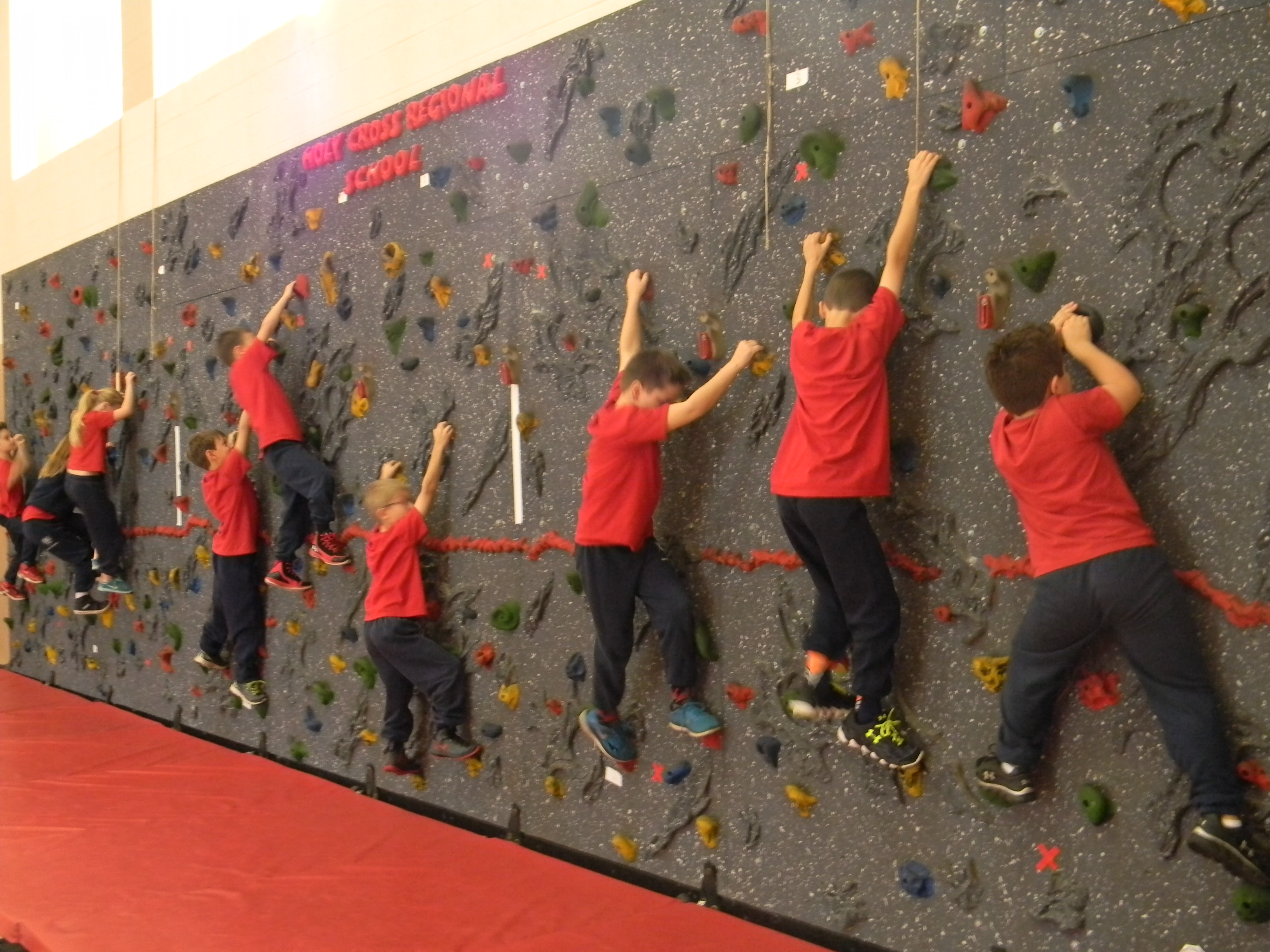 Gymnasium - Rock Wall