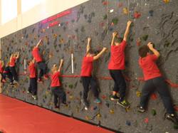 Gymnasium - Rock Wall