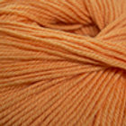 Orange #825 Cascade 220 Superwash