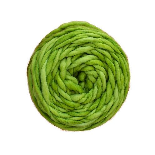 Apple Green RAS011 Malabrigo Rasta