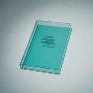 WALTERCIO CALDAS Como imprimir sombras | 2012 Acrílico moldado e gravado 32 x 23 x 5 cm Edição: 40 Coleção particular