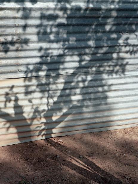 shadow fence  2018