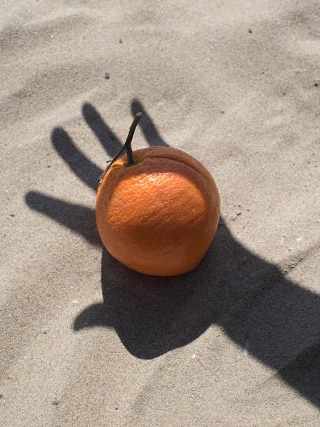 orange  2018