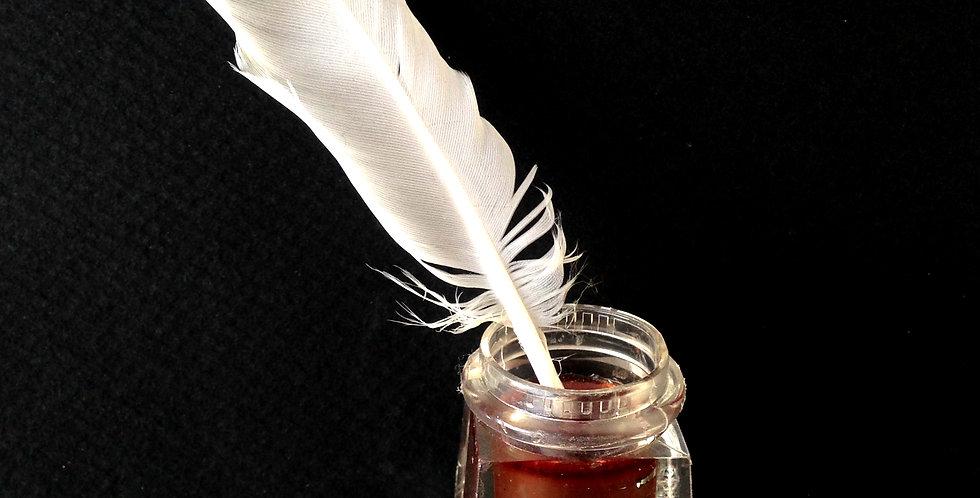 Bague L'ENCRIER, vraie plume blanche