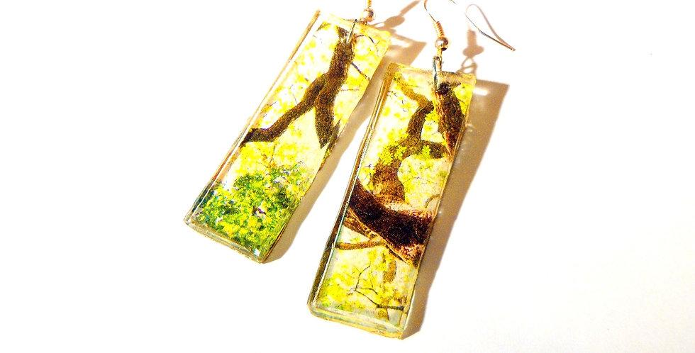 Boucles d'oreilles EN FORÊT, résine, branches d'arbre, rectangulaires