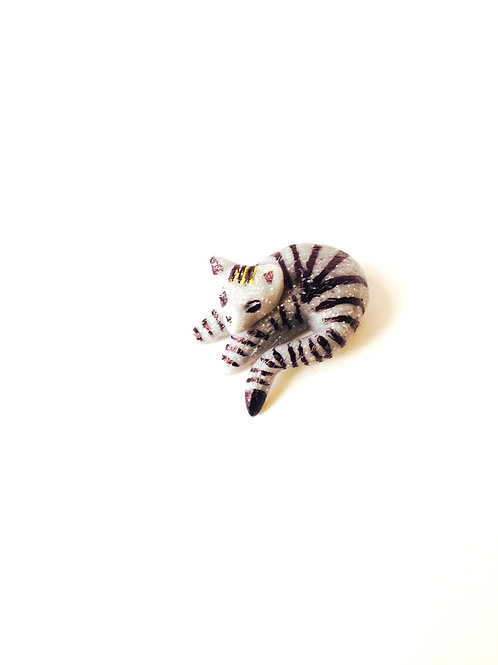 Chat miniature, gris, couché en rond