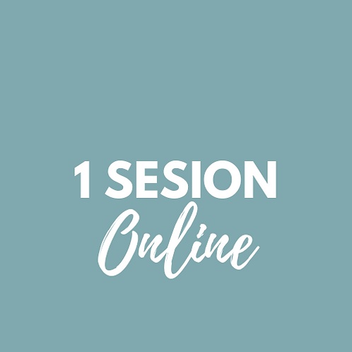 1 Sesion ONLINE