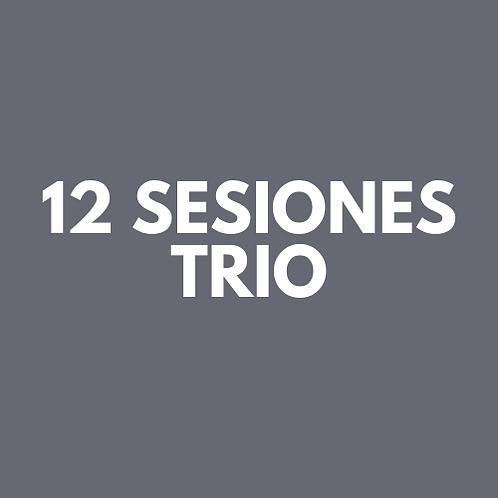 12 Sesiones Trio