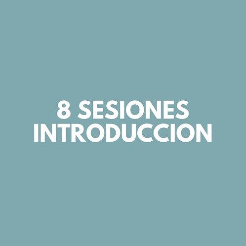 8 Sesiones INTRODUCCION