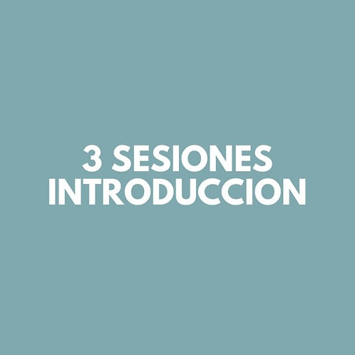 3 Sesiones INTRODUCCION