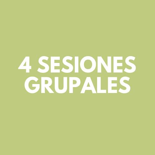 4 Sesiones Grupales